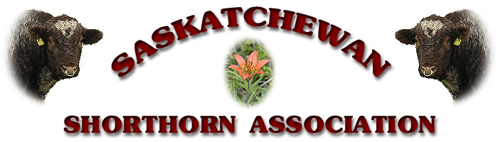 Saskatchewan Shorthorn Association heading